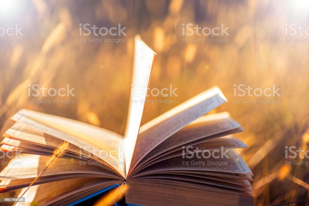 Open book on wooden table on natural background. Soft focus stock photo
