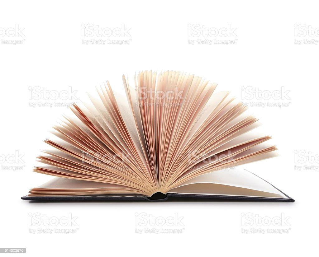 Open Book - Stock Image stock photo