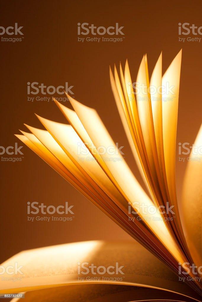 Libro abierto. Pasar las páginas. - foto de stock