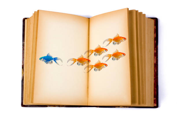 open book with a group of fish - photo reverse search stock pictures, royalty-free photos & images