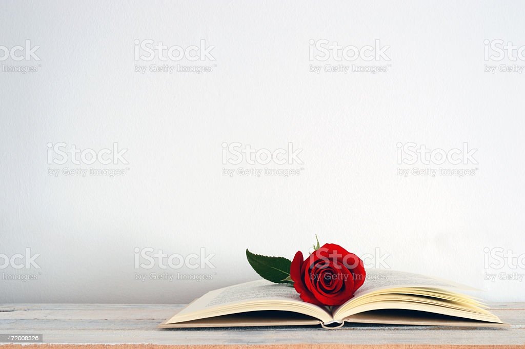 Open book with a red rose flower on it. stock photo