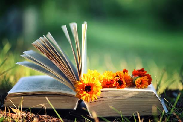 Open book with flower on grass picture id851771678?b=1&k=6&m=851771678&s=612x612&w=0&h=efobv3gy6rwu9bmkyyy0hnjf7fnhsbug6 ha6zh5beq=