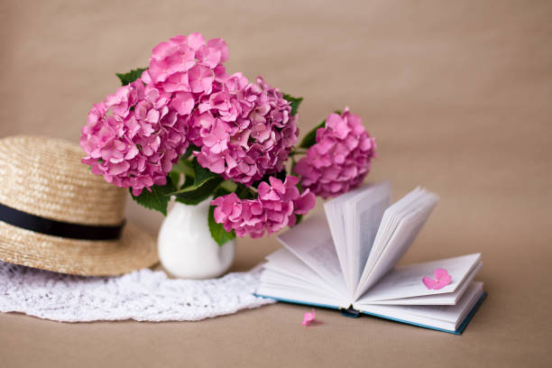 Open book with hydrangea flowers and straw hat. Romantic still life in vintage style. Concept of reading female poetry. stock photo