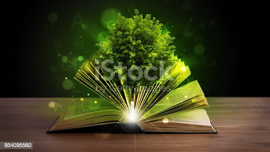 istock Open book with magical green tree and rays of light 934095560