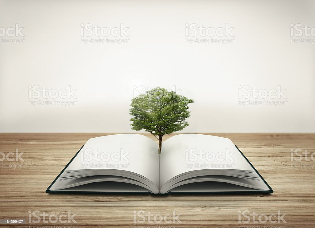 Open book with tree stock photo