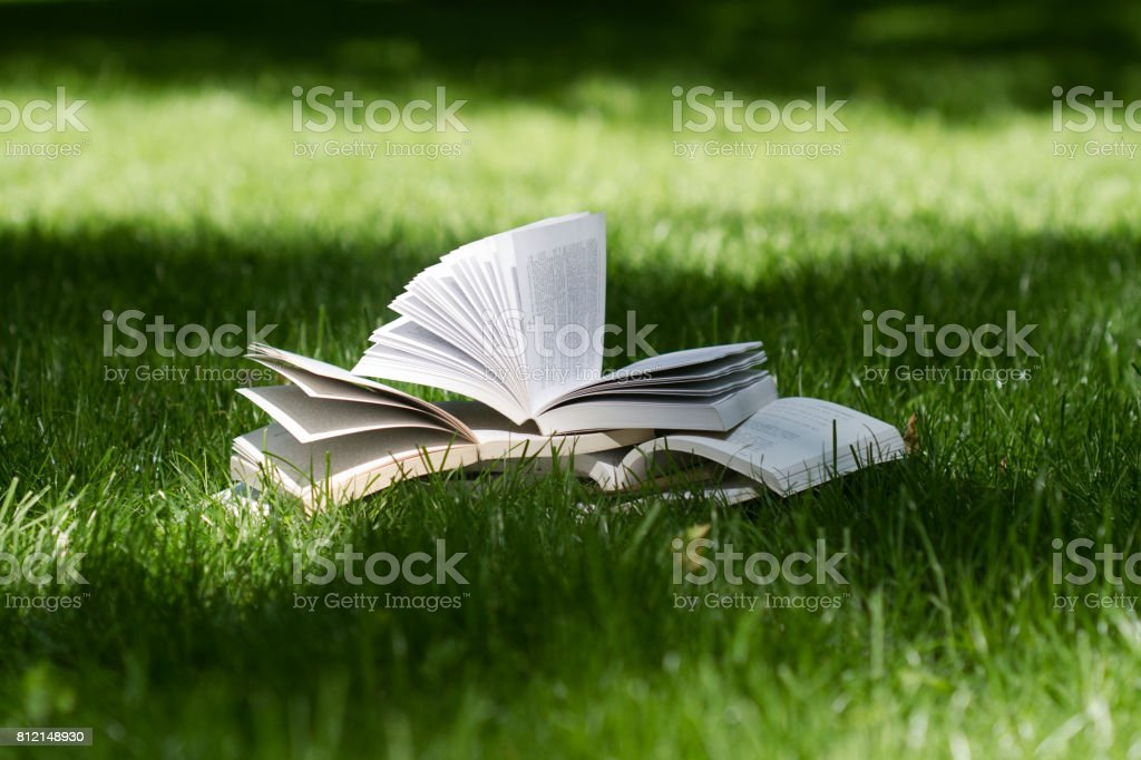 open books on grass in a green park stock photo
