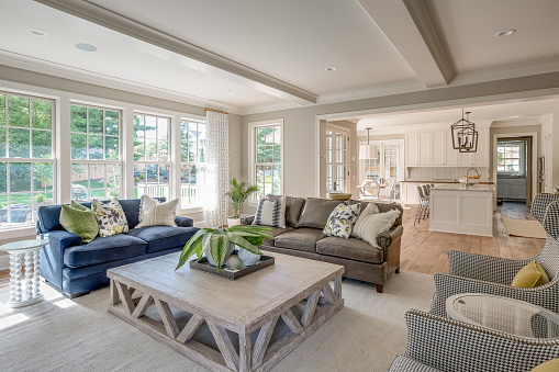 Kitchen in background with comfortable seating in large great room