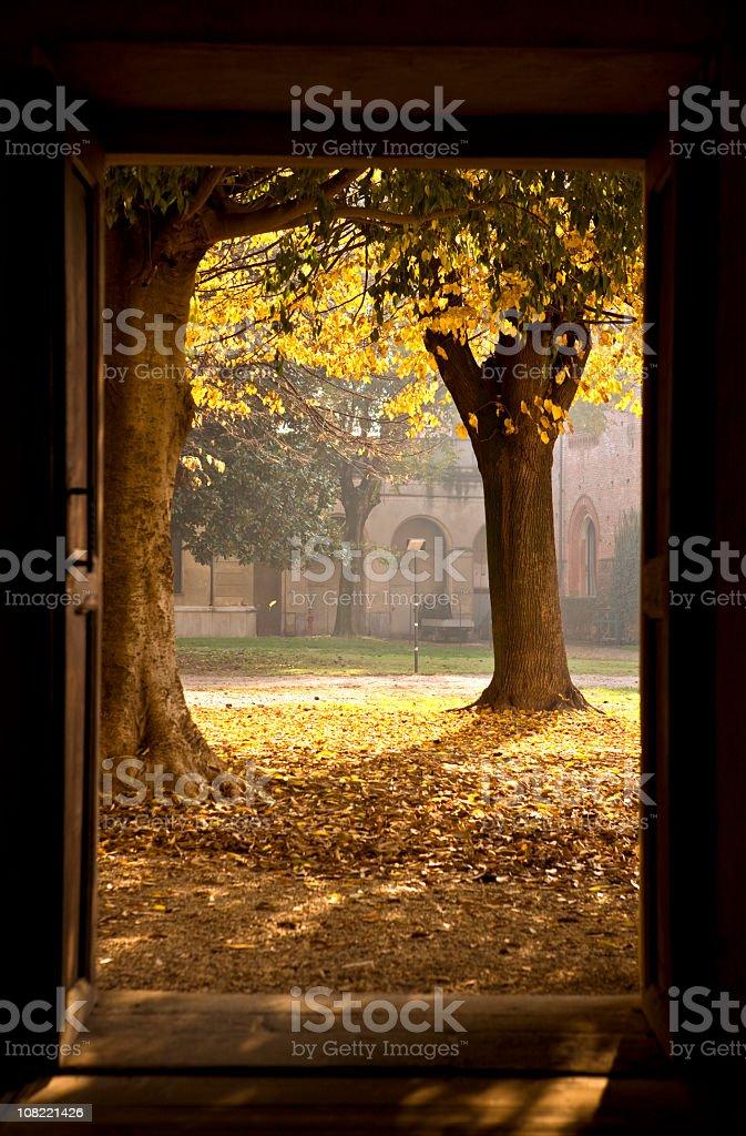 Open Door. Color Image stock photo