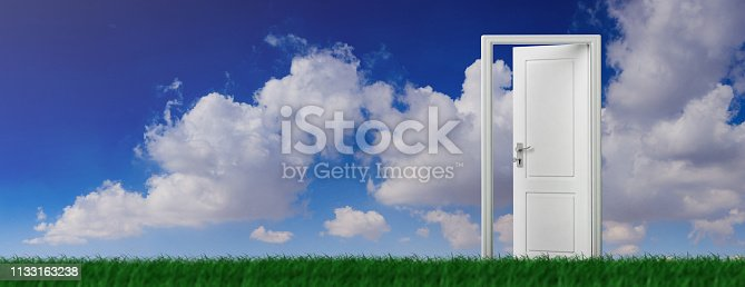 507793335 istock photo Open door on green grass, blue sky background, banner. 3d illustration 1133163238
