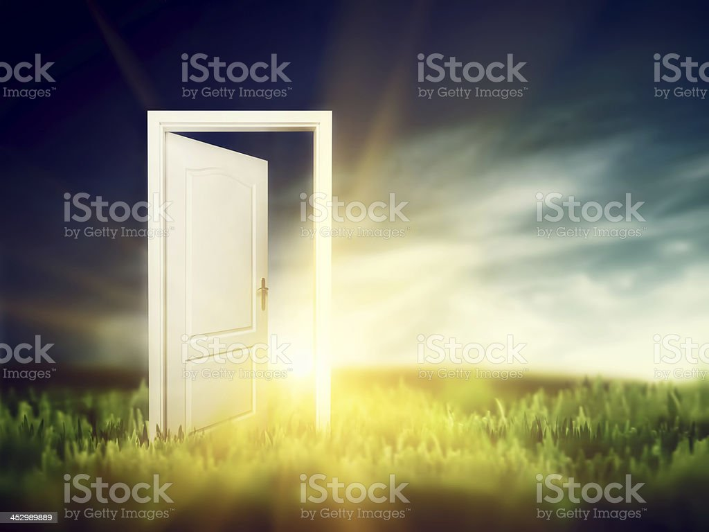 Open door on the green field. Conceptual stock photo