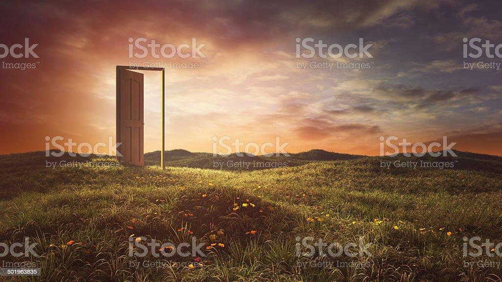 Abrir portas no verão meadow - foto de acervo