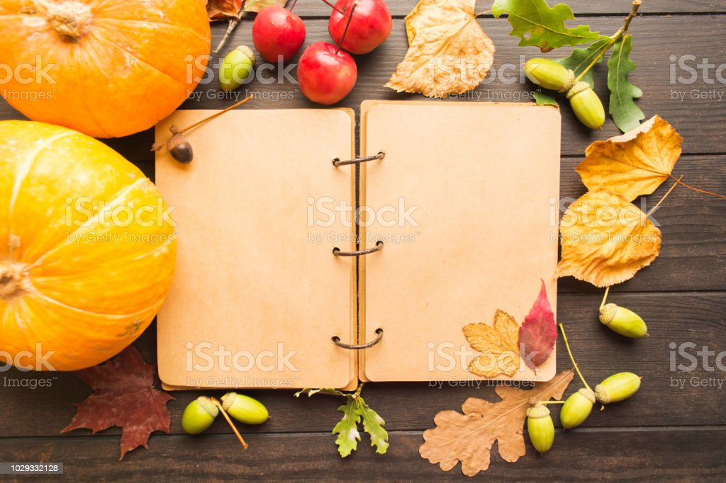 Open empty book with autumn decoration stock photo