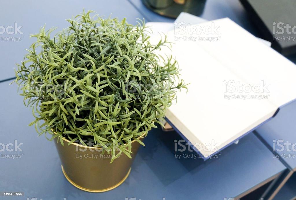 Otwórz pustą książkę z rośliną ozdobną na drewnianym stole - Zbiór zdjęć royalty-free (Badania)