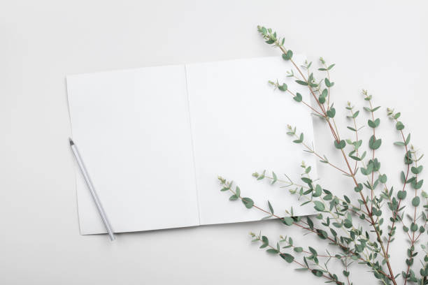 open empty notebook and eucalyptus leaf on gray table from above. minimalistic working desk. flat lay. - folha de caderno imagens e fotografias de stock