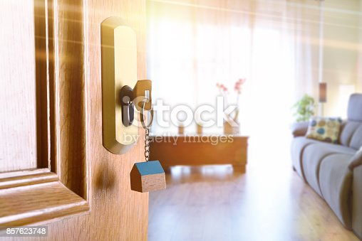 istock Open entrance door with furnished living room in the background 857623748