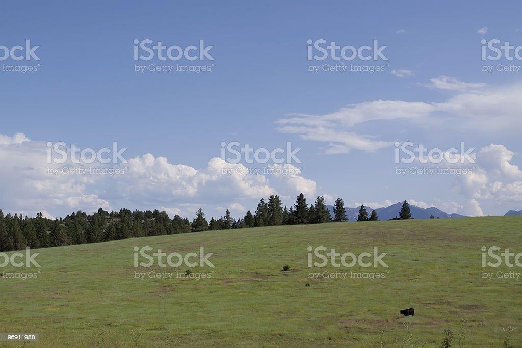 Open farmland in Idaho royalty-free stock photo