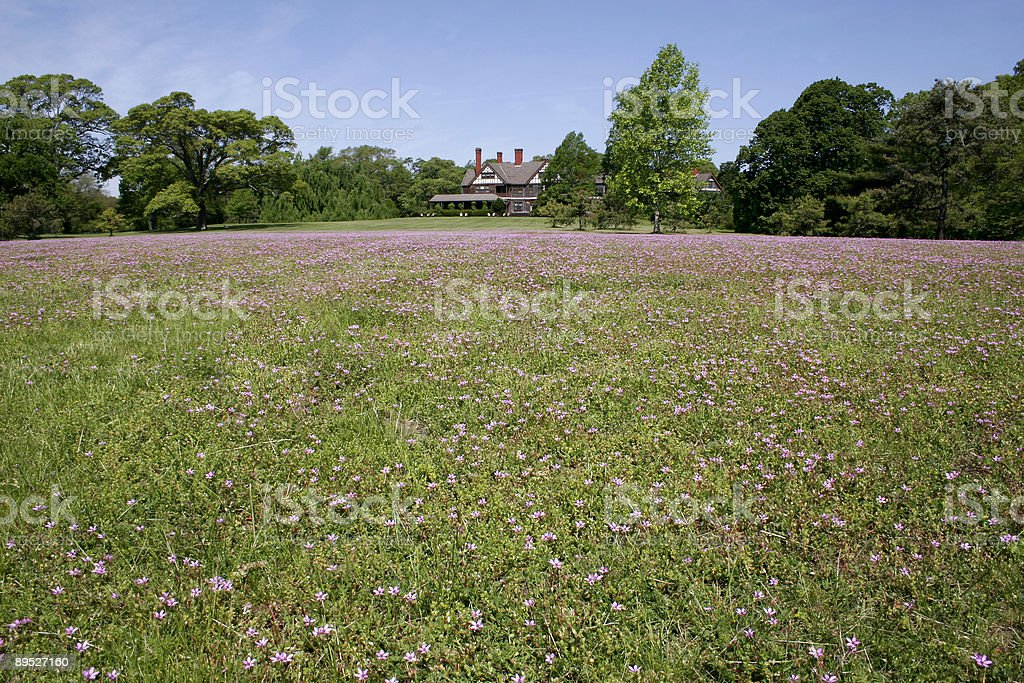 Open Field and Historic Mansion 免版稅 stock photo