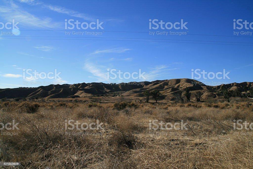 Open Field stock photo