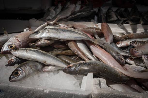 Open fish market stock photo