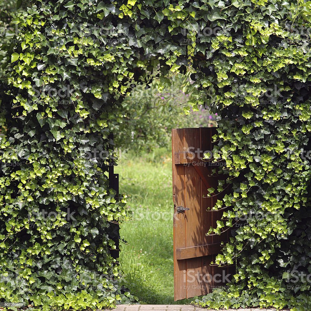 Open garden gate with ivy archway stock photo