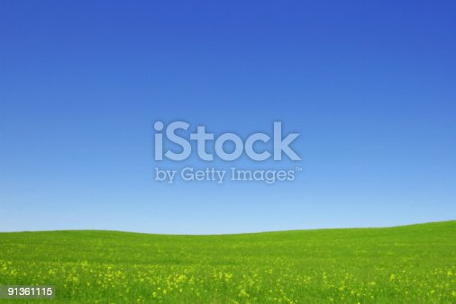 Excellent clear sky and green grass fields. Sunny, spring idyllic day. Background landscape. See more this series::::  http://www.zoomstudio.pl/istock/link-series-09.jpg