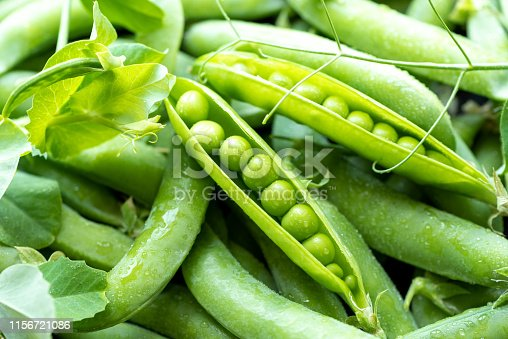 Open green pea pods closeup, background.