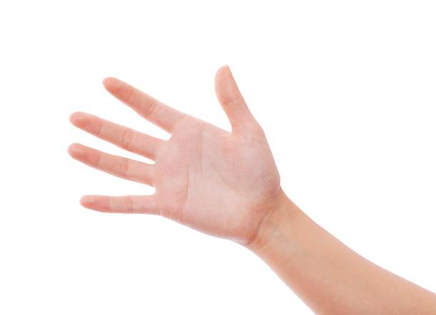 mano aperta - palmo foto e immagini stock