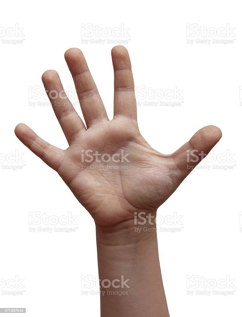 Open Hand ( Isolated ) stock photo