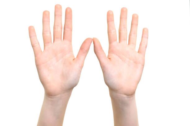 símbolo de mãos abertas - dois objetos - fotografias e filmes do acervo