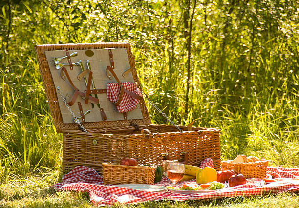 Open picnic basket with blanket on the grass stock photo