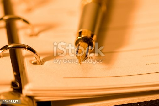 istock Open planner and fountain pen. 124468371