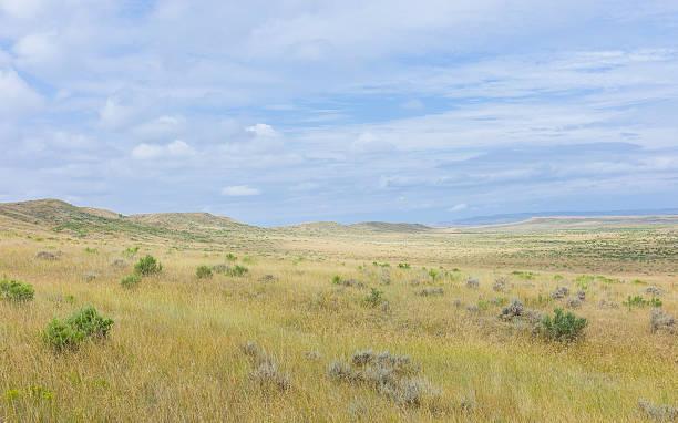 open prarie, grassland and sagebrush near vermillion, nebraska, usa. - great plains stock photos and pictures
