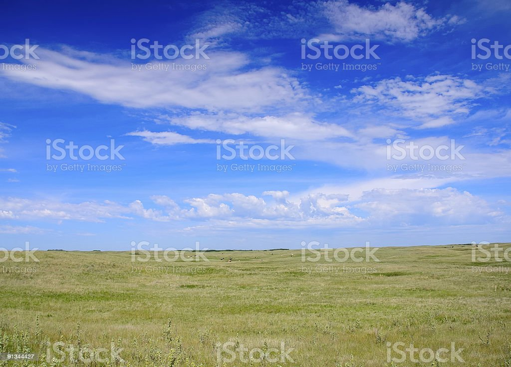 Open Range Prairie royalty-free stock photo