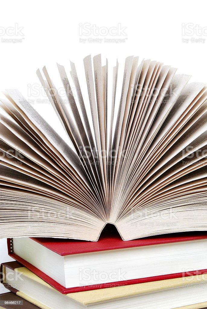 Open Reading royalty-free stock photo