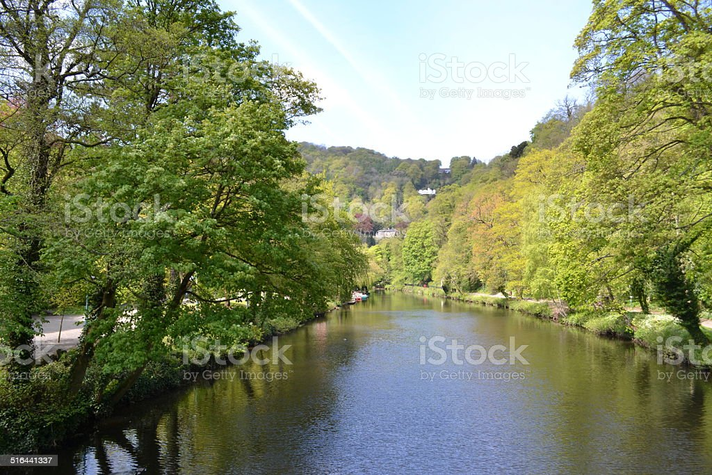 Open River View. stock photo