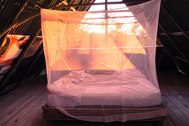 Open room in Costa Rica Open room in Costa Rica with mosquito net and orange light netting stock pictures, royalty-free photos & images