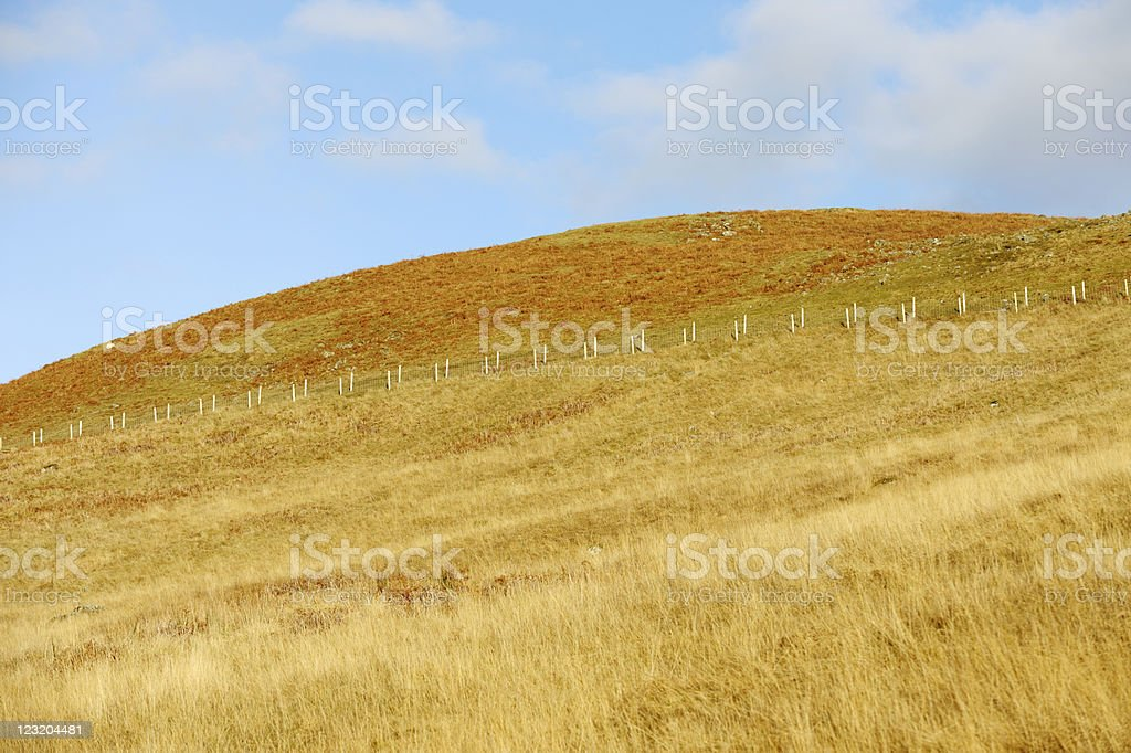 Open Scottish moorland in Dumfries and Galloway south west Scotland royalty-free stock photo
