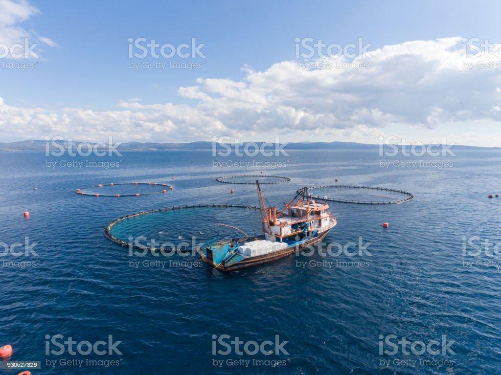 Open Sea Fish Farm stock photo
