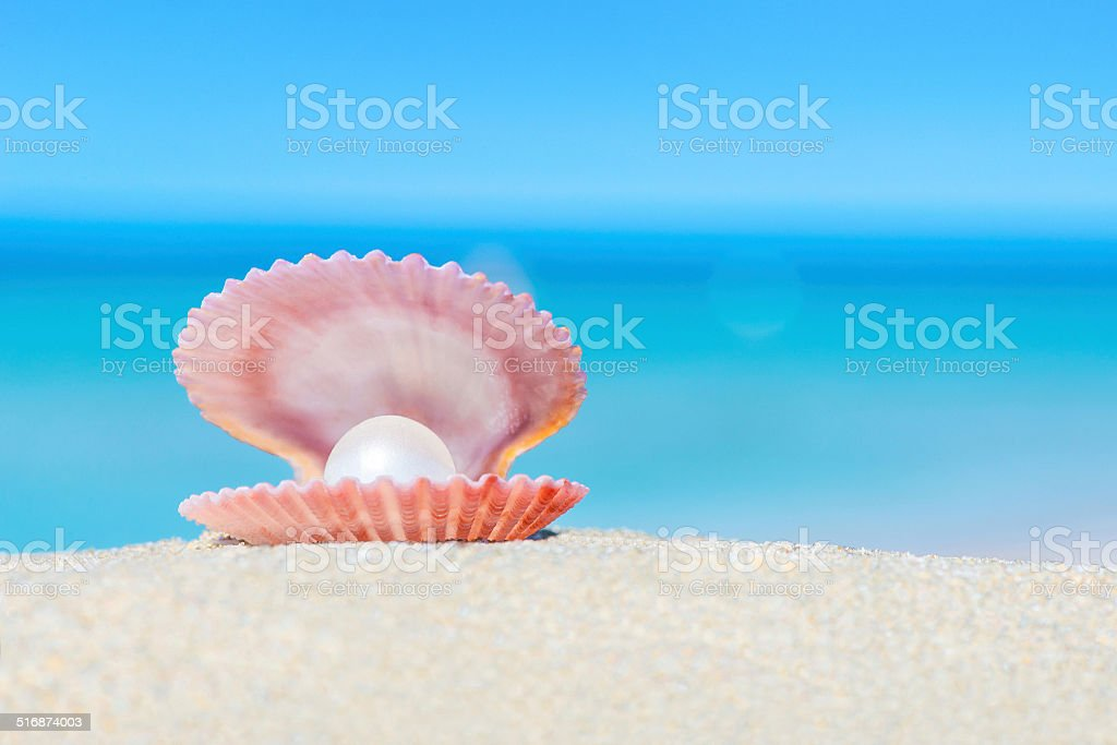 Open shell with a pearl on sandy beach stock photo