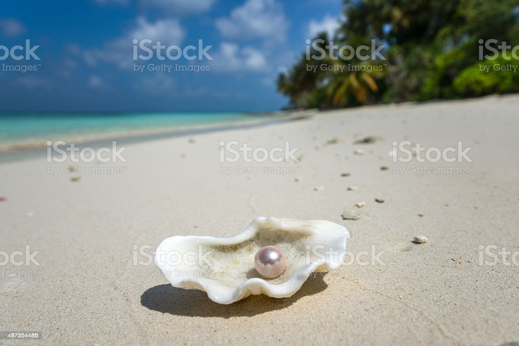Open shell with a pearl on tropical sandy beach stock photo