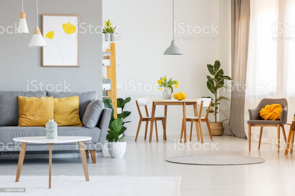 Open space living and dining room interior with gray sofa, wooden tables, white chairs and plants. Real photo stock photo