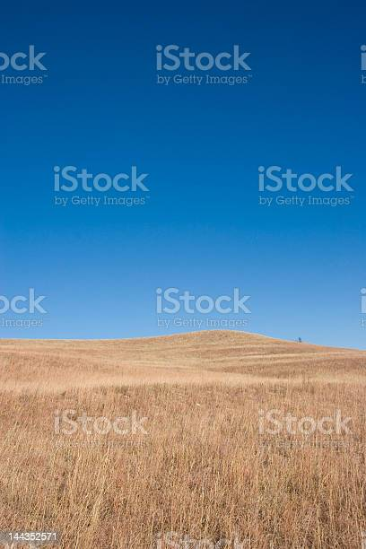 Photo of Open Spaces