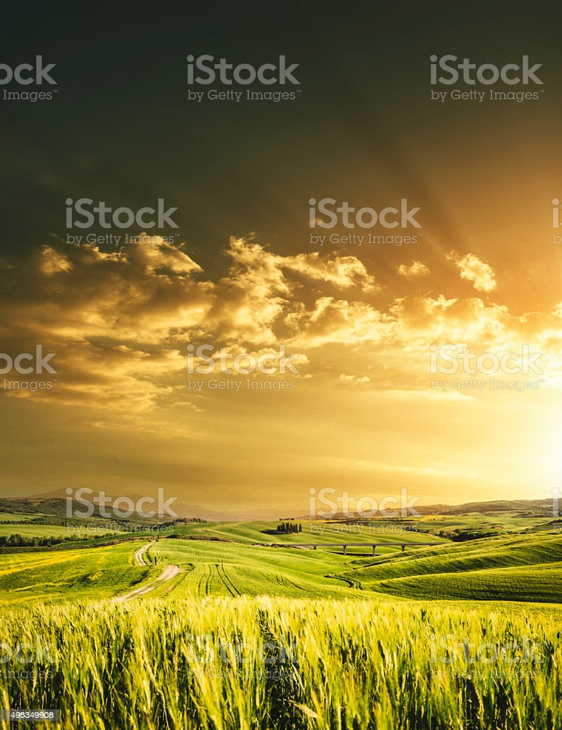 open spring meadow landscape in tuscany for spring stock photo