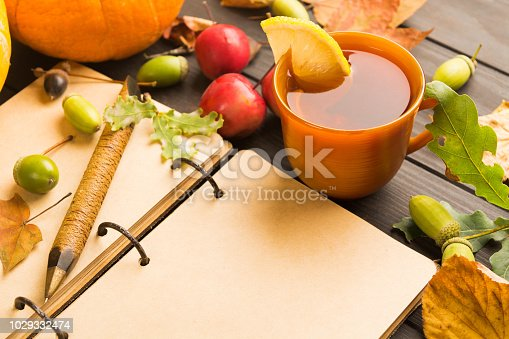istock Open vintage book with copy space and autumn hot beverage with lemon and falling leaves 1029332474