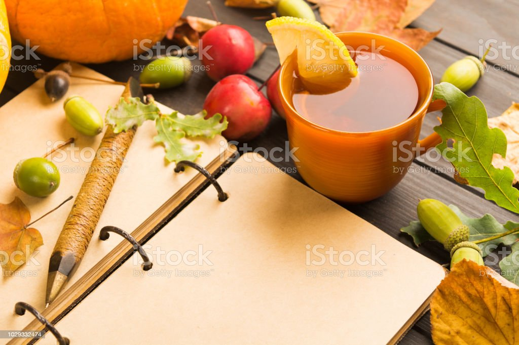 Open vintage book with copy space and autumn hot beverage with lemon and falling leaves stock photo