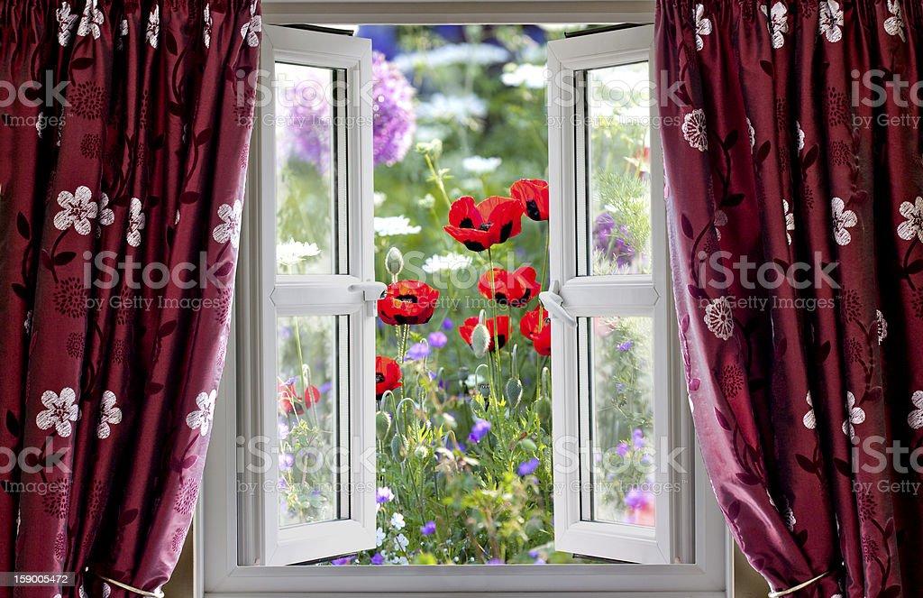 Open window view onto wild flower garden stock photo
