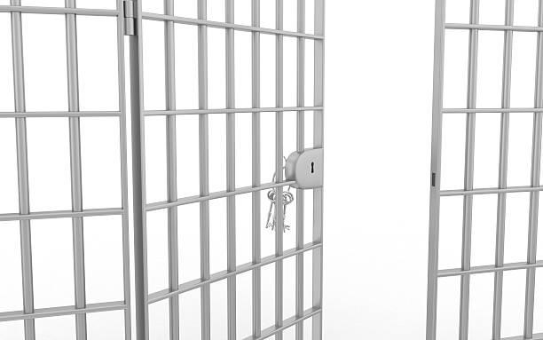Image result for jail bars door open