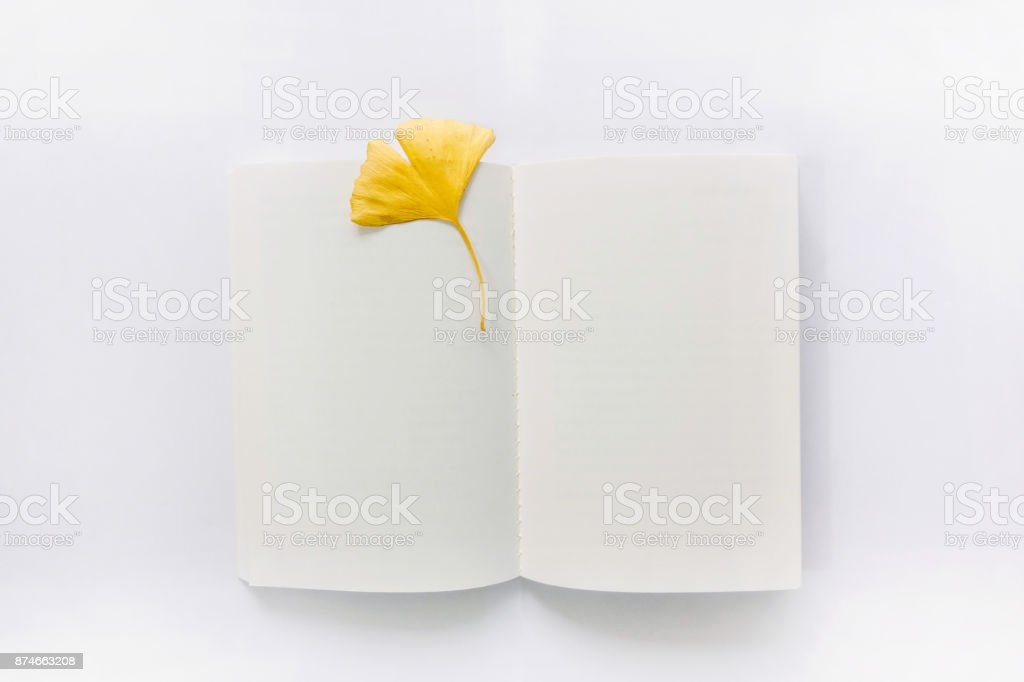 Opened book and leaf bookmark stock photo