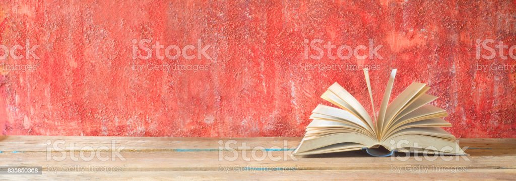 opened book, panorama stock photo