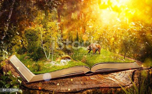 istock Opened book 541152594